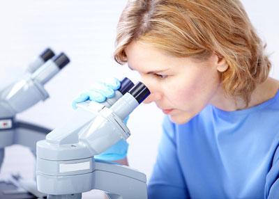 Servicio Tecnico de Microscopios Euromex